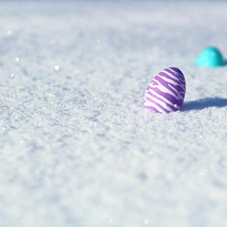 Easter eggs in snow