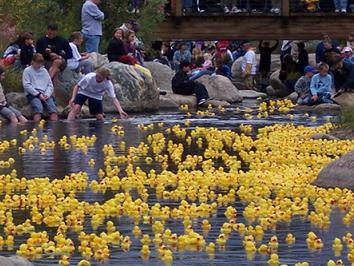 breckenridge events duck race